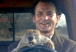groundhog day driving