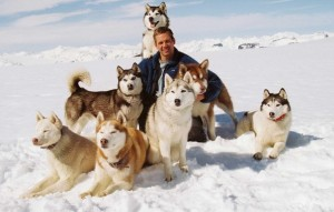 Eight Below Walker Dogs